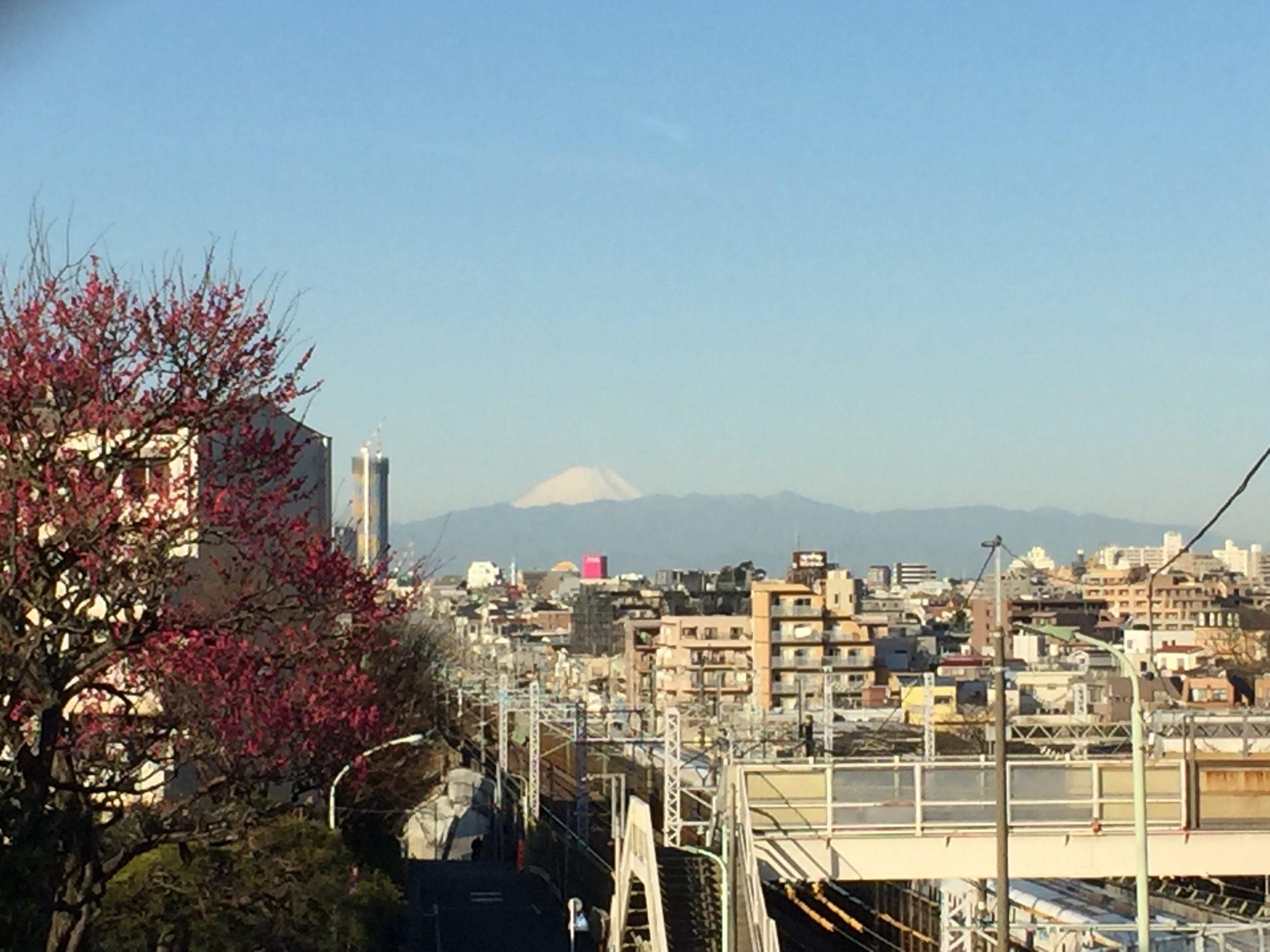 今日の富士山_20170222